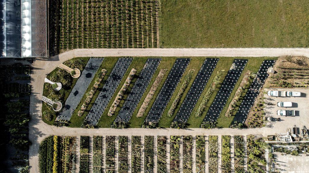Pépinière Jose paysagiste Colembert vue drone